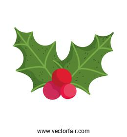 merry christmas, holly berry decoration icon isolation