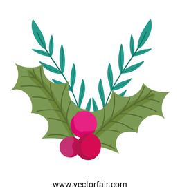 merry christmas, holly berry branch decoration icon isolation