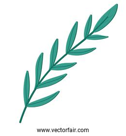 branch leaves foliage nature icon isolated