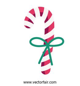 merry christmas candy cane with ribbon decoration celebration icon design