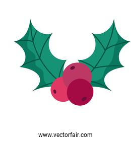 merry christmas holly berry decoration celebration icon design