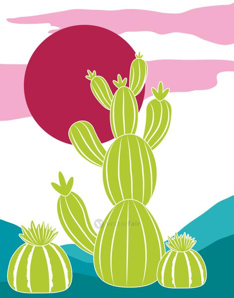 cactus plants ecology nature red sun card