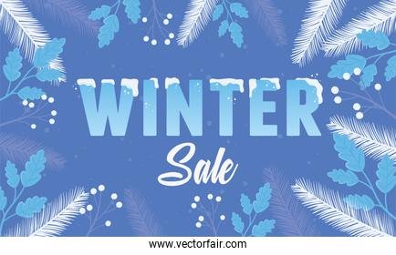 winter sale with snow branch leaves blue background