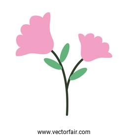 beautiful flowers icon, half line half color style