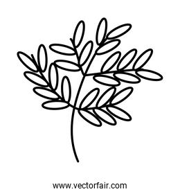 branch with leaves icon, line style
