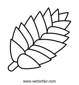icon of tropical leaf, line style
