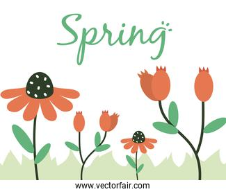 spring design with beautiful flowers and grass, half line half color style