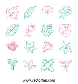 dry leaves and doodle leaves icon set, line style