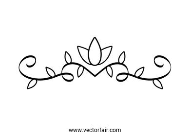 elegant divider with floral forms icon