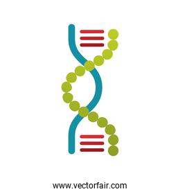 colorful of DNA Symbol Isolated