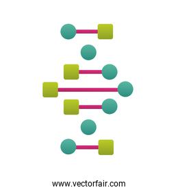 DNA spiral strands green and pink