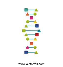DNA design template.icon for science technology