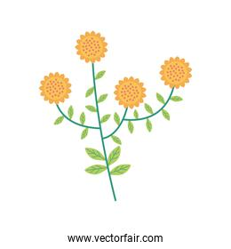 yellow flowers garden isolated icons
