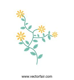 yellow flowers garden flat element