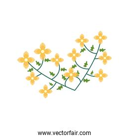 yellow flowers nature flat element