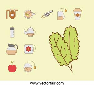 mint leafs and bundle of tea set fill style icons