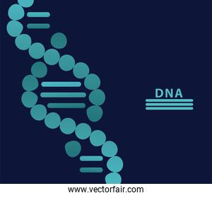 dna molecule structure and lettering