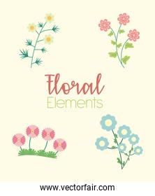 lettering and four flowers garden flat elements