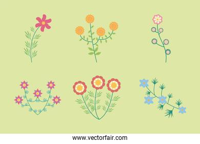 bundle of six flowers garden flat elements in green background