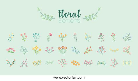 bundle of thirty flowers garden flat elements