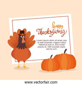 happy thanksgiving celebration lettering card with pumpkins and turkey