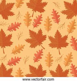 happy thanksgiving celebration card with leafs pattern background