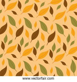 happy thanksgiving celebration card with leafs background
