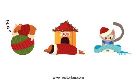 christmas cute animals include hamster dog cat with sweater and scarf
