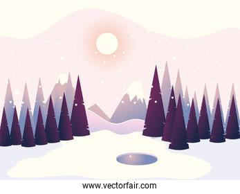 winter landscape pine trees forest mountains sky