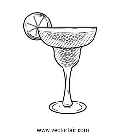 margarita cocktail icon, sketch style