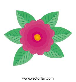 cute flower and leafs icon
