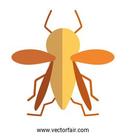insect small animal in cartoon flat icon style