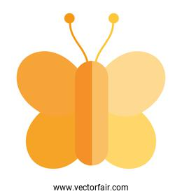 yellow butterfly insect animal in cartoon flat icon style