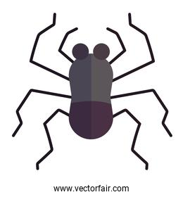 spider insect animal in cartoon flat icon style