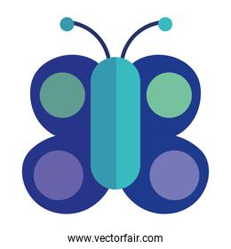 butterfly insect animal drawing cartoon flat icon style