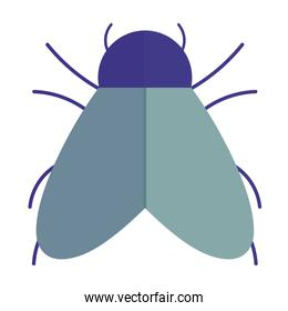 bug with wings animal in cartoon flat icon style