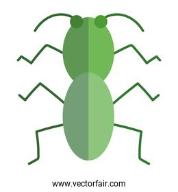 cricket insect animal in cartoon flat icon style
