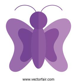 butterfly insect animal natural cartoon flat icon style