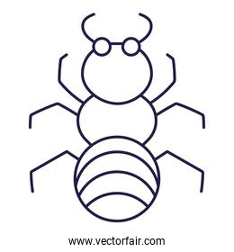 insect ant animal in cartoon line icon style