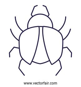 insect animal in cartoon linear icon style