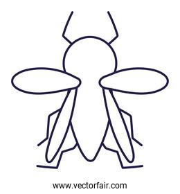 insect small animal in cartoon line icon style