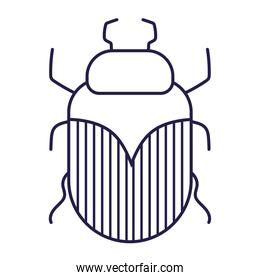 insect animal in cartoon line icon style white background
