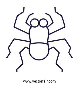 spider insect animal in cartoon line icon style