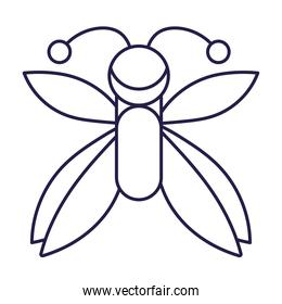 winged insect animal in cartoon line icon style