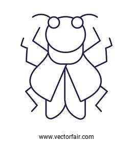insect animal in cartoon thin line icon style