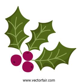 merry christmas, holly berry decoration icon design
