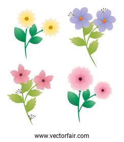bundle of beautiful flowers and leafs decorative icons