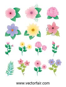 bundle of fourteen beautiful flowers and leafs decorative icons