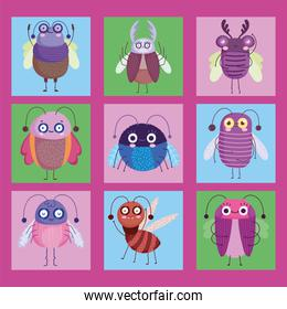 cute bugs insects animal in cartoon style, color icons set