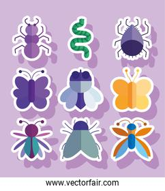 collection bugs natural animal cartoon in stickers style
